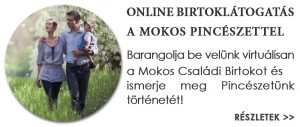 Mokos_Pinceszet_Villanyi_borvidek_Palkonya_Birtoklatogatas